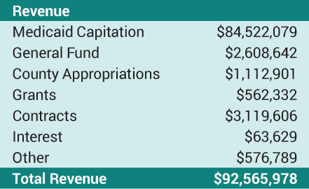 Revenue Table